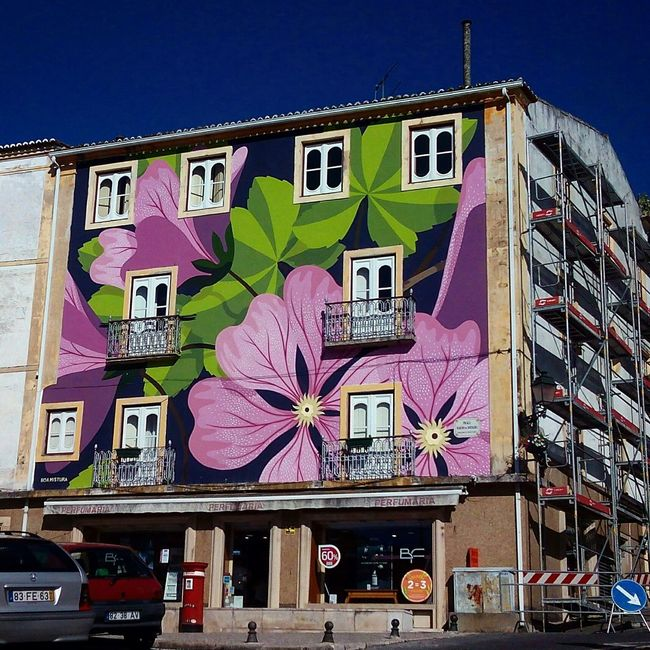 Street Abrantes Portugal Streetart Colour Of Life Colorful Arquitecture City Street Graffiti