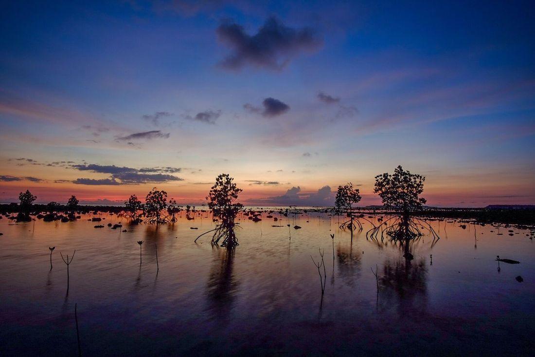 Image result for cabangtalan beach sunset
