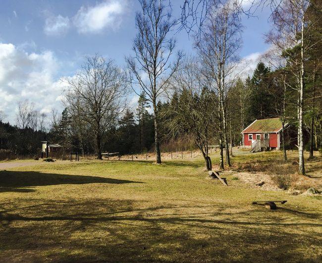 Sweden Sweden-landscape Cottage Country Cottage Cotton Cottage Life Spring Springtime Spring Is Coming