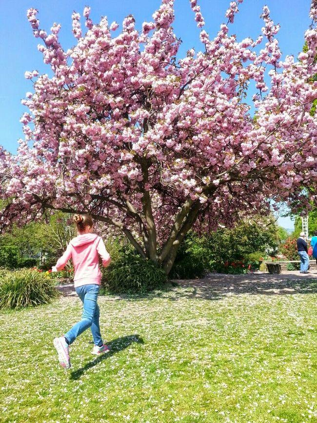 My Doughter Mis Hijas Y Yo Flores, Bosques Y Naturaleza. Flowers,Plants & Garden