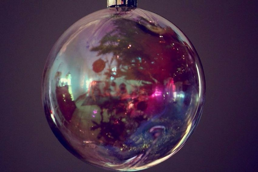 Christmas Tree Chrismas Photography Colors