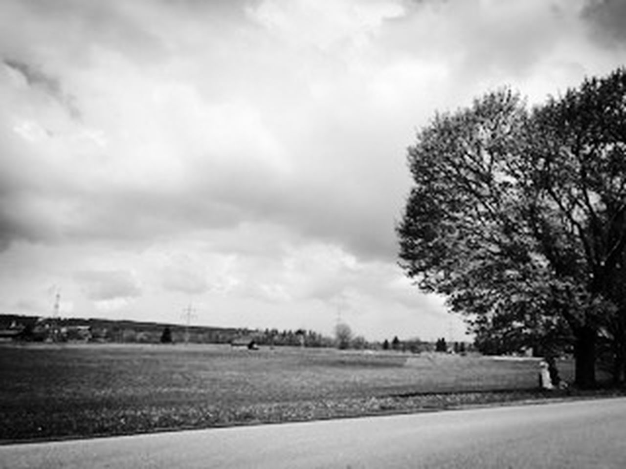 cloud - sky, tree, rural scene, agriculture, nature, scenics, field, sky, outdoors, landscape, no people, day, city