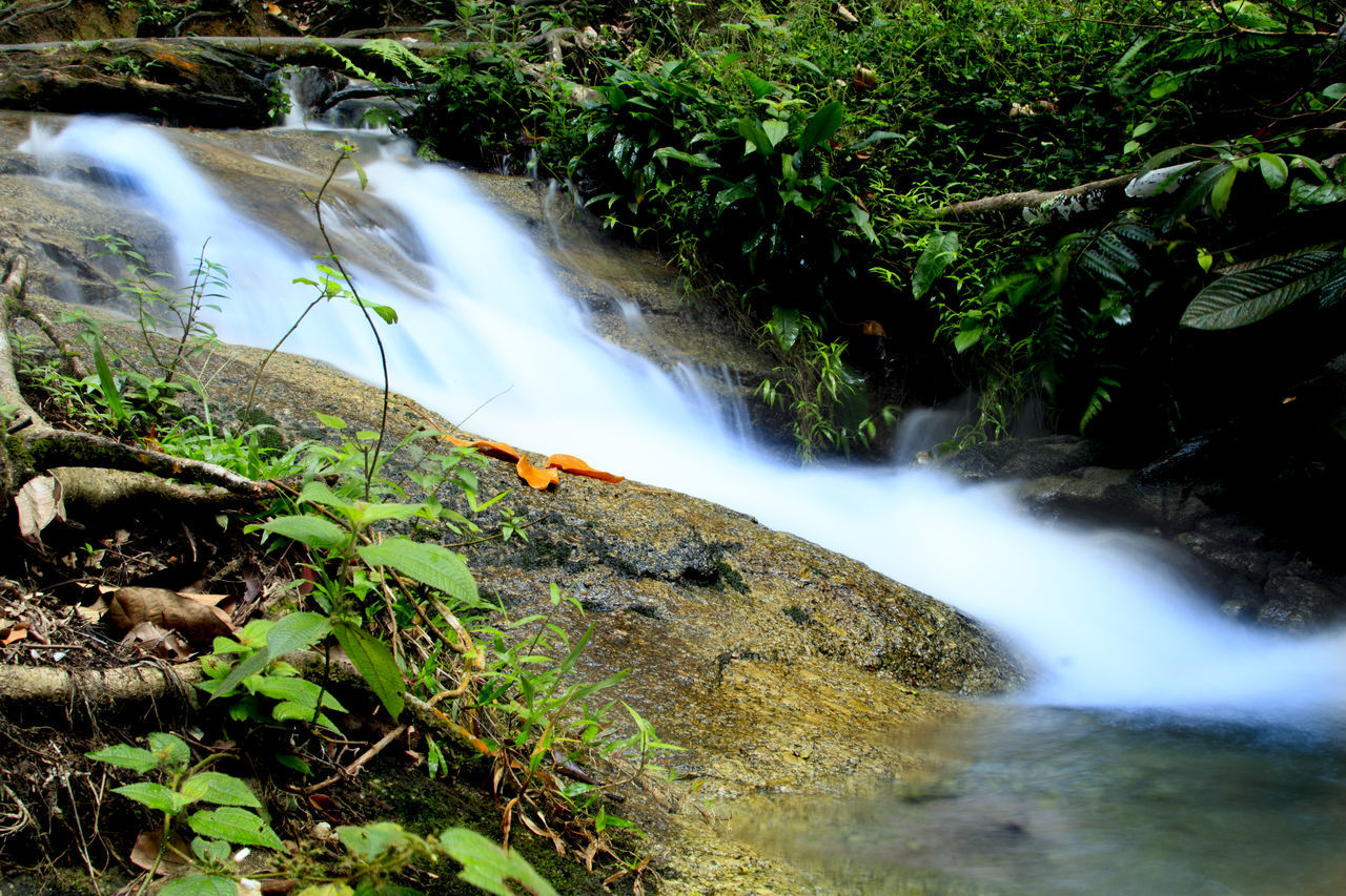 waterfall, flowing water, water, motion, long exposure, flowing, nature, beauty in nature, forest, blurred motion, river, scenics, outdoors, day, no people, power in nature, tranquil scene, speed, running water, tree, tranquility, growth, vacations, travel destinations, hot spring