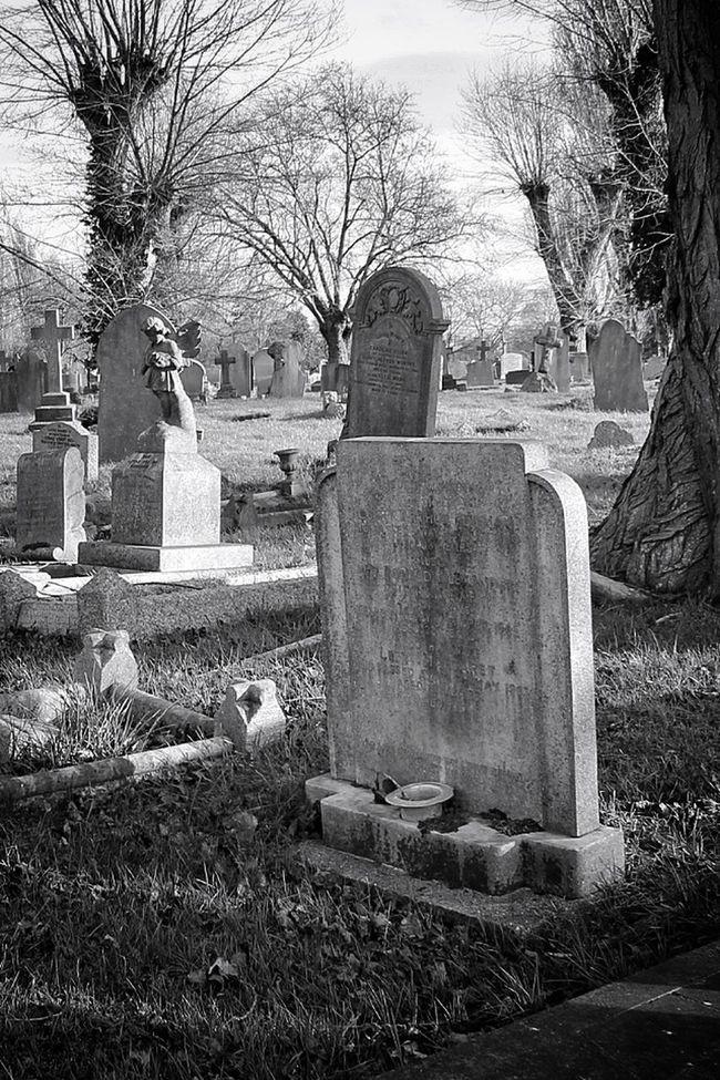 Landscape My Unique Style Photography Monochrome Black&white Blancoynegro Graveyard Beauty Cemetery Bw_collection Graveyard