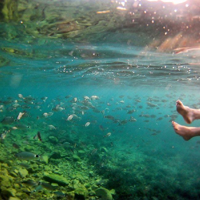 Fish, fish & fishy Marmaid Sea Seashore Feet pedicure azure deniz aegean Turkey Turkye waves rocks Bodrum mavi bodrumbayresort 🐠🐟🐡🐚🌊 adventureinturkey turkey_home