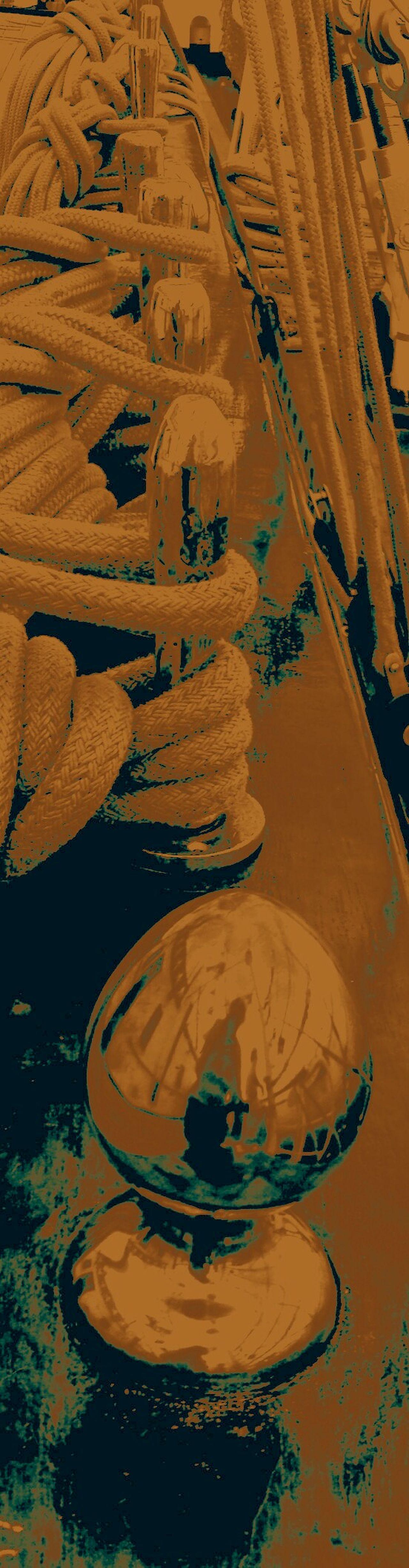 Mariposas disfrazadas de sirenas tirando dardos envenenados Nature_collection Eye4photography  Cuerdas Naturelovers PlaceresDeLaVida EyeEmBestPics