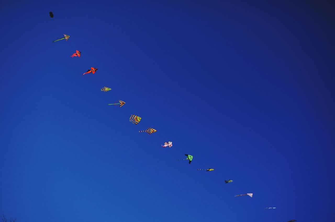 Free . Flying Multi Colored Blue Fun Sky Outdoors Happiness Day Sea Life Marche Italy Tranquility Kites Flying Kites In The Sky Kites In Motion Live For The Story Place Of Heart