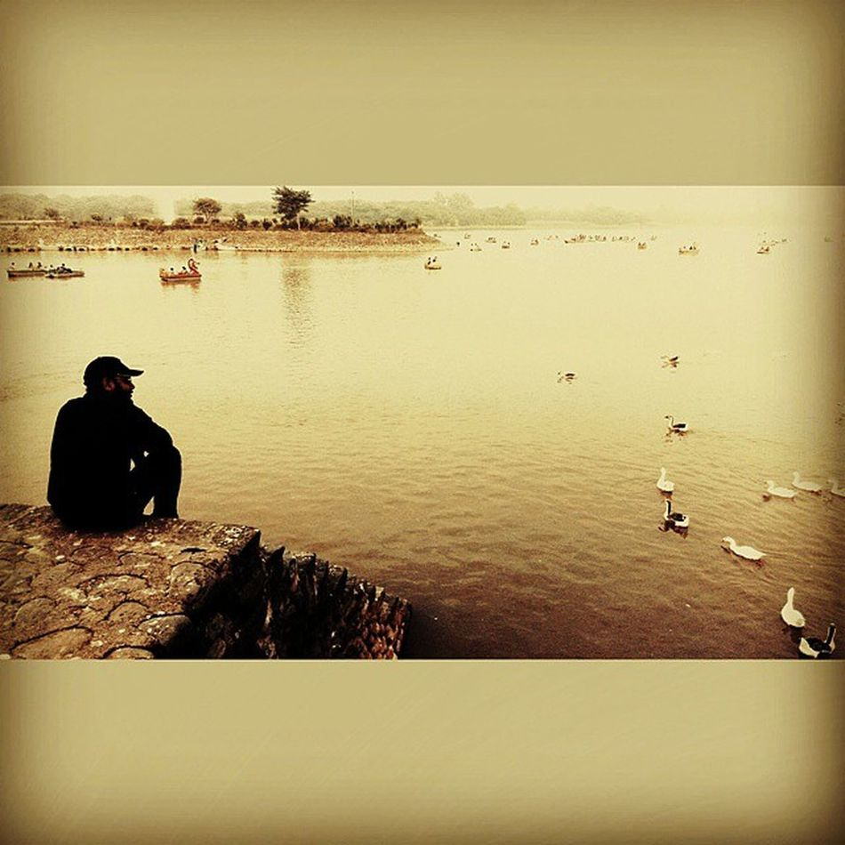 Sunset Me Enjoying Chandigarh Sukhnalake Roadtrip Chandigarh_tourism Awesomeview Swans Beautiful_lake Chandigarhsector1 Instalike Likeforlike Photooftheday