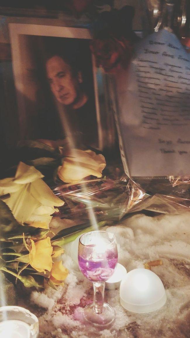 Rip Alan Rickman Severus Snape Always