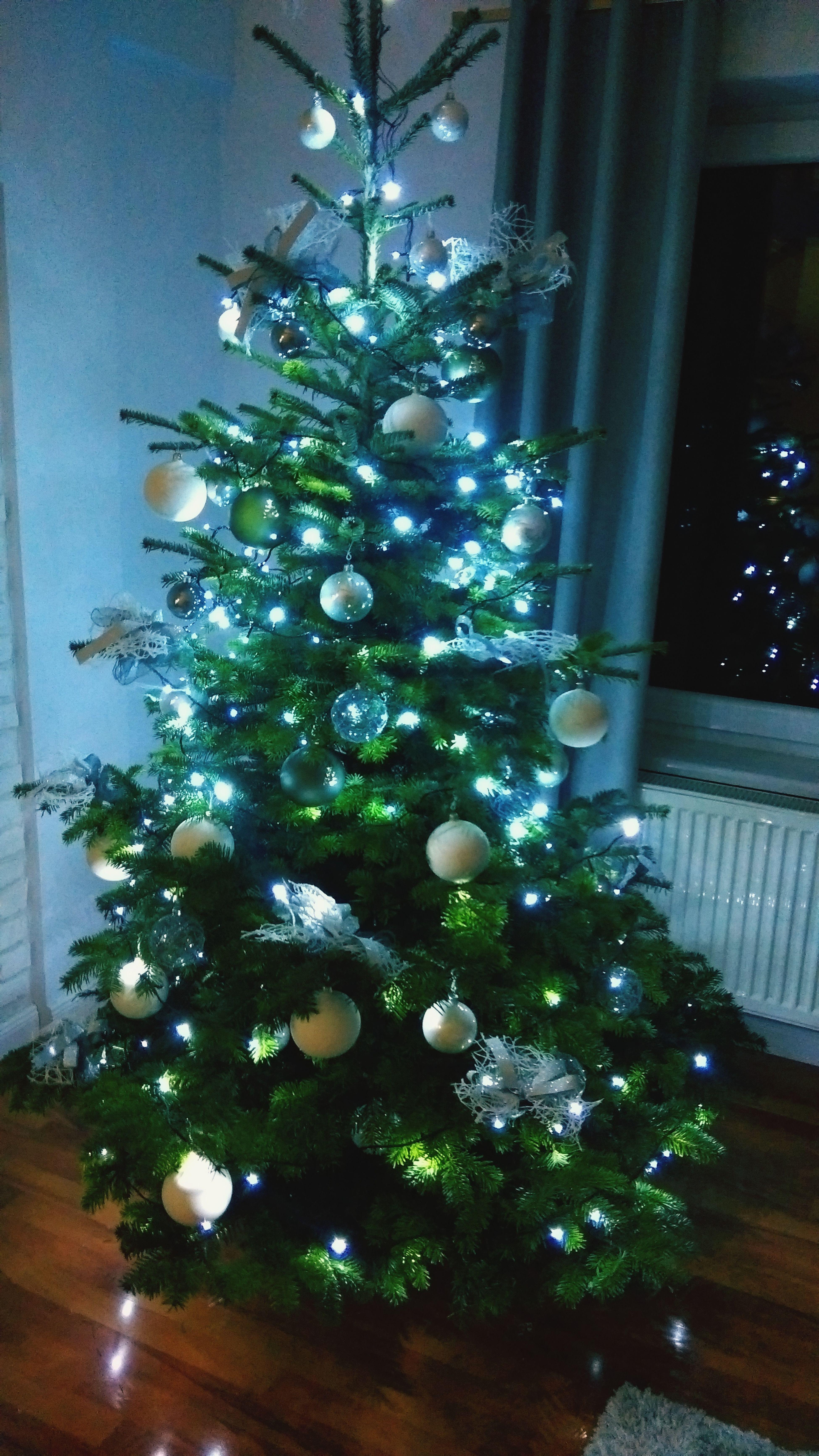 Święta Christmas Christmas Tree Indoors  Celebration Tradition Decoration first eyeem photo