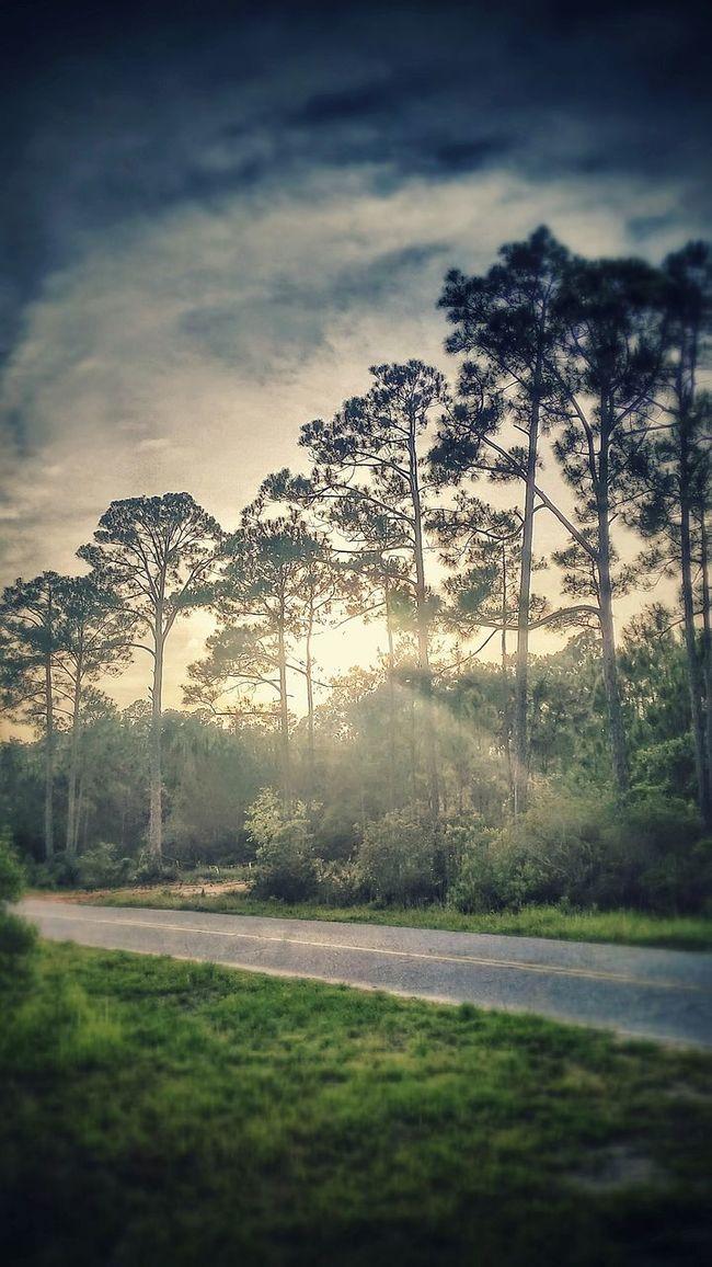 Nature On Your Doorstep Enjoying Life Enjoying The Sun Capturing Freedom