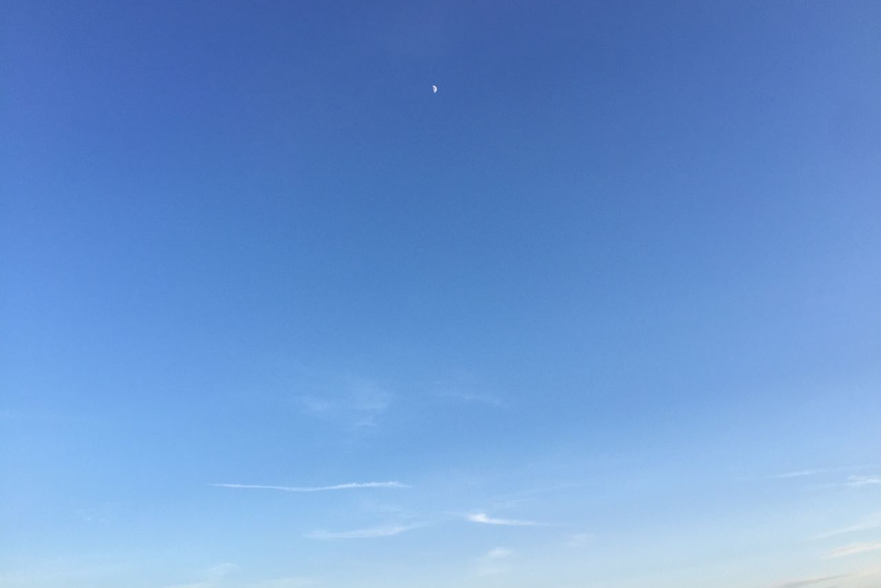 blue, beauty in nature, nature, low angle view, scenics, tranquility, tranquil scene, sky, sky only, moon, outdoors, day, no people, clear sky, astronomy