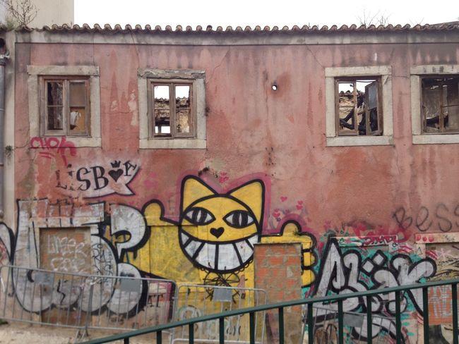 Monsieur chat Abandoned Graffiti Lisboa M. Chat Monsieur Chat No People Pink Wall Street Art/Graffiti