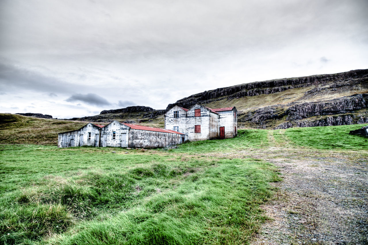 Iceland abandoned farm Abandoned Architecture Built Structure Cloud - Sky Day Decay Dramatic Sky Farm Grass Grass Green Color Growth HDR Höfn Iceland Landscape Nature No People Outdoors Sky Tree Vintage
