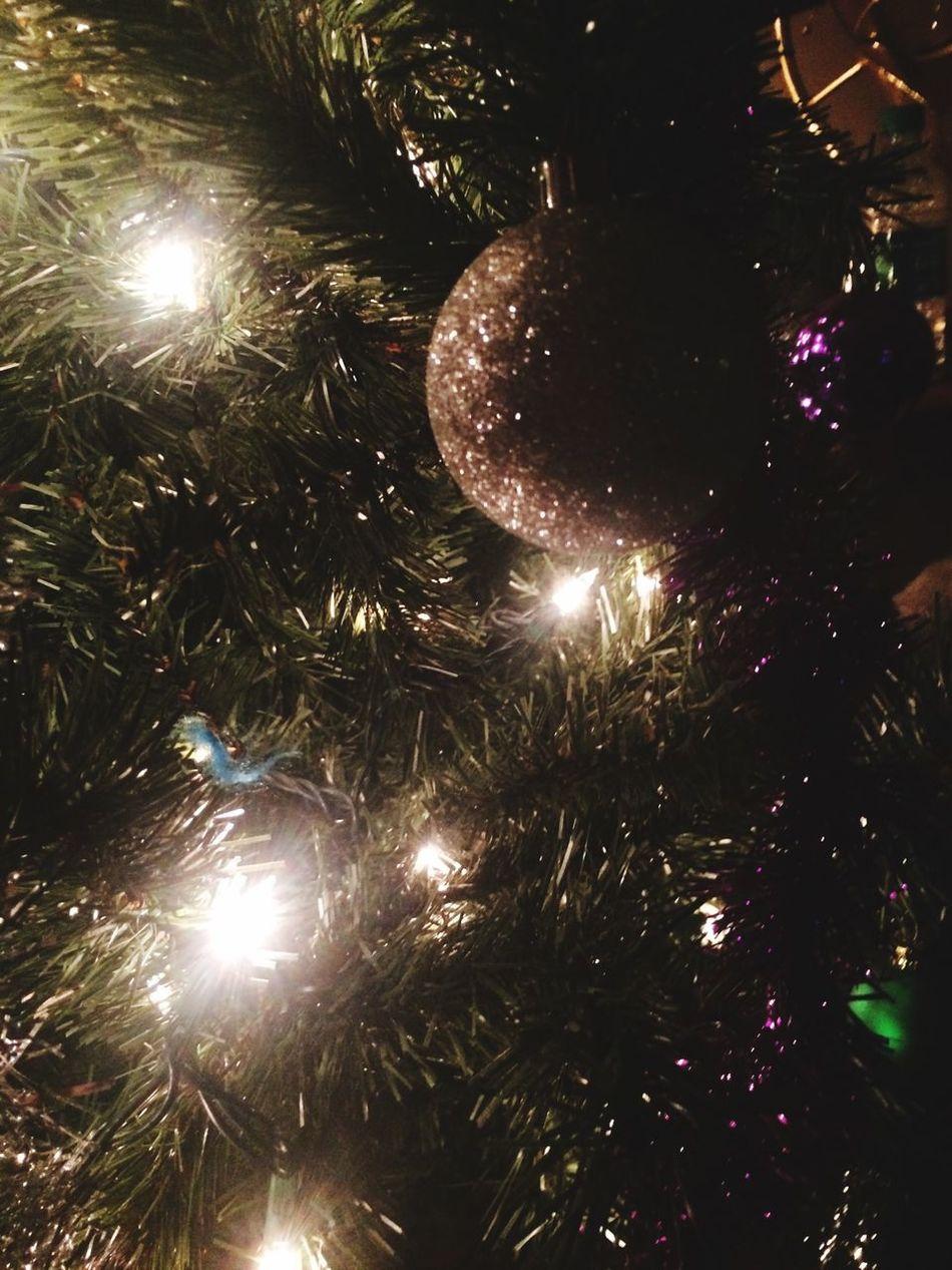 Christmastime Christmas Loving It! 2 More Days!!!:) First Eyeem Photo