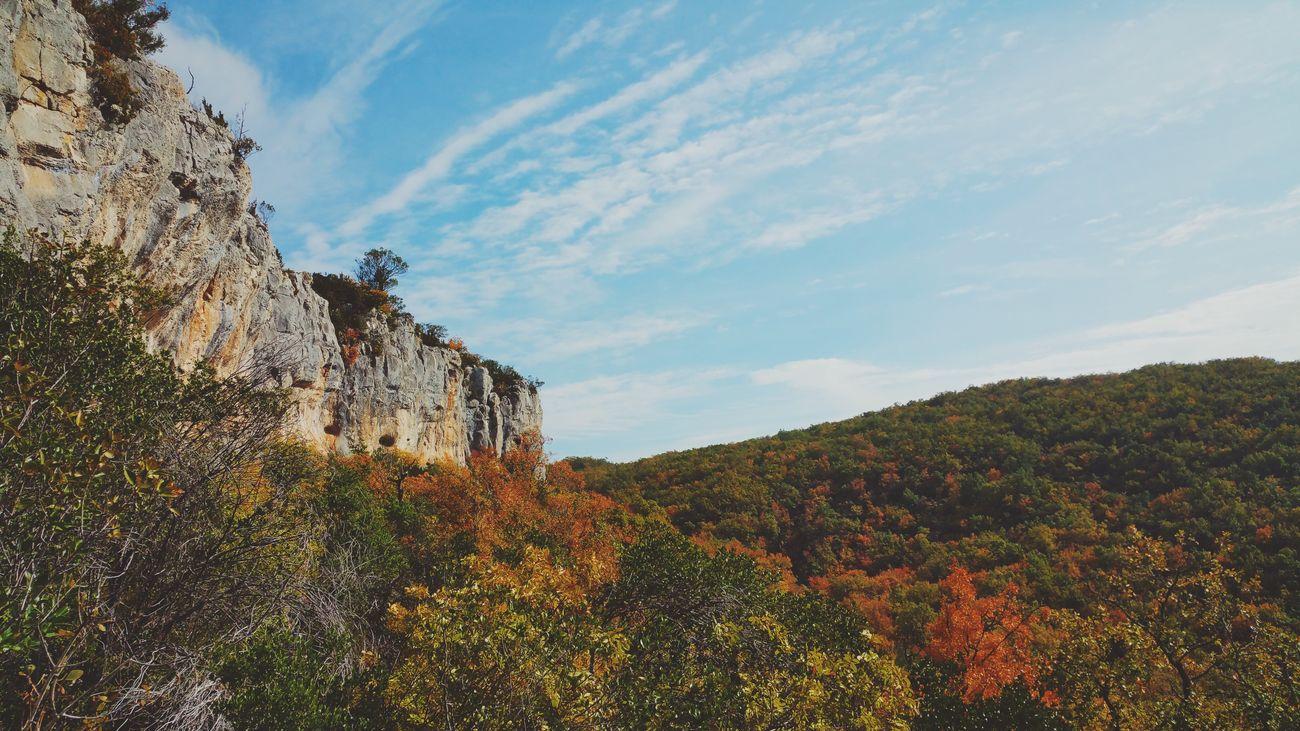 Cliffs Cliff Climbing Forest Fall Fall Colors Autumn Colors Autumn Midi-Pyrenees Tarn Et Garonne