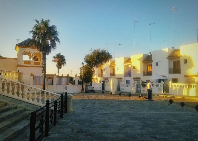 Chipiona, Andalucia, Spain 🇪🇸 💓 SPAIN Outdoor Photography Spain♥ Andalucía Chipiona Golden Hour Sunset White Town Palm Trees Atlantic Coast Evening Journey Good Times Andalusia Andalucia Spain Travel Photography My Favorite Place