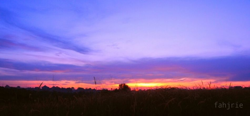 Sunrise Sky_collection EyeEm Indonesia EyeEm Nature Lover