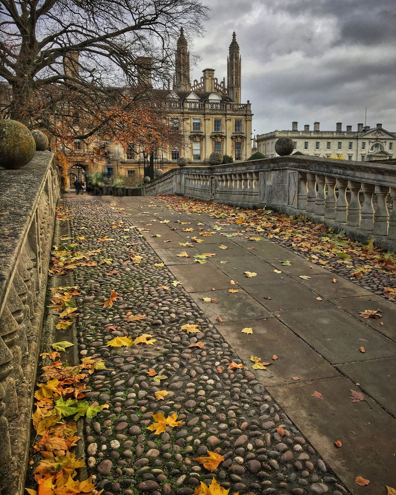 Built Structure Architecture Building Exterior Autumn Change Travel Destinations Cambridge University Cambridge Cambridgeshire Architecture_collection Bridge Leaves Outdoors No People The Way Forward City Bare Tree Day Nature