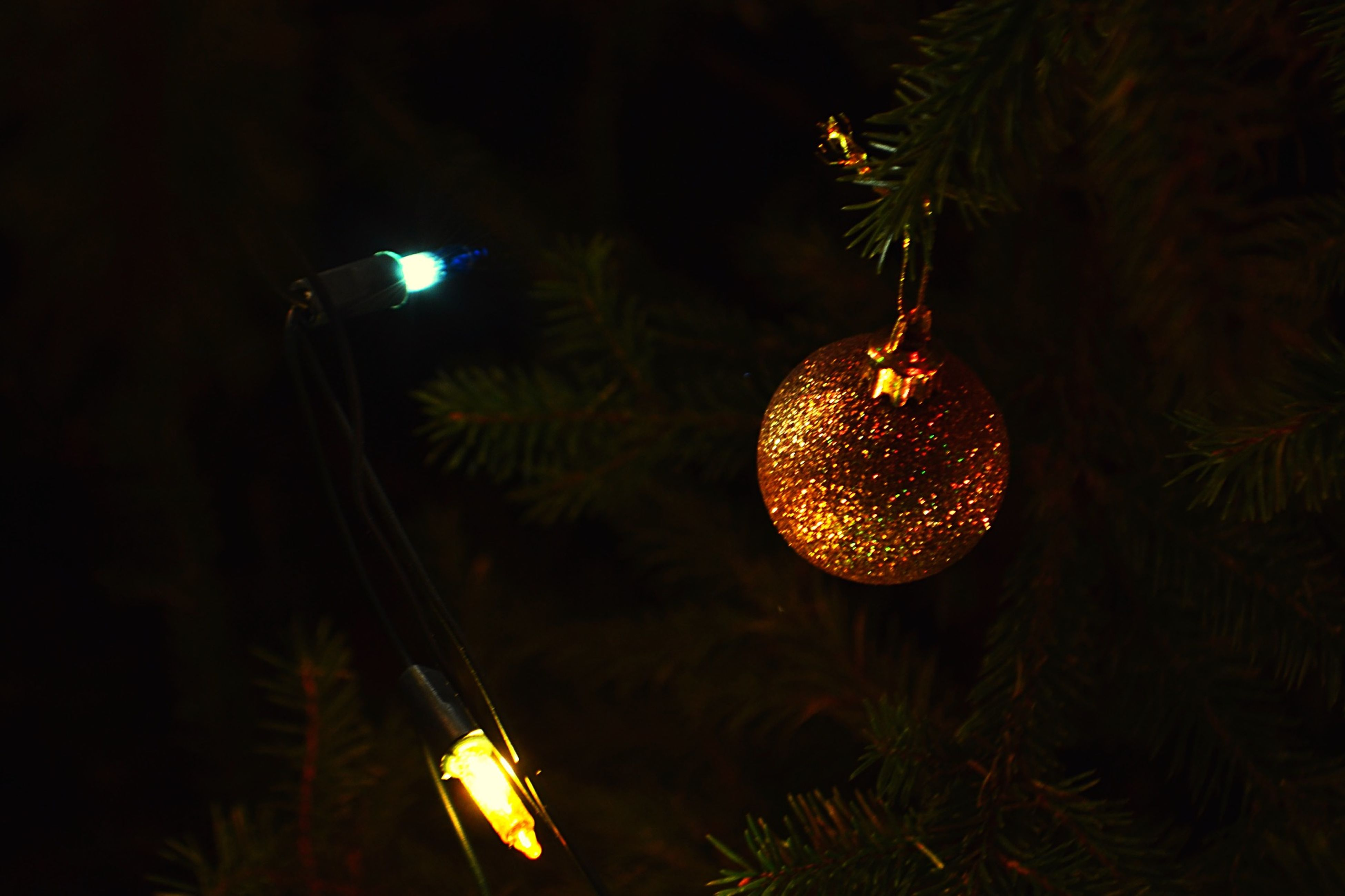 illuminated, night, lighting equipment, glowing, celebration, decoration, low angle view, hanging, electricity, lit, light bulb, electric light, lantern, christmas decoration, decor, light - natural phenomenon, electric lamp, christmas, close-up, indoors