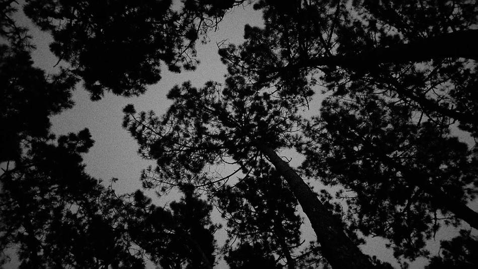 Night shadows Contrast Odeceixe Portugal Odeceixe