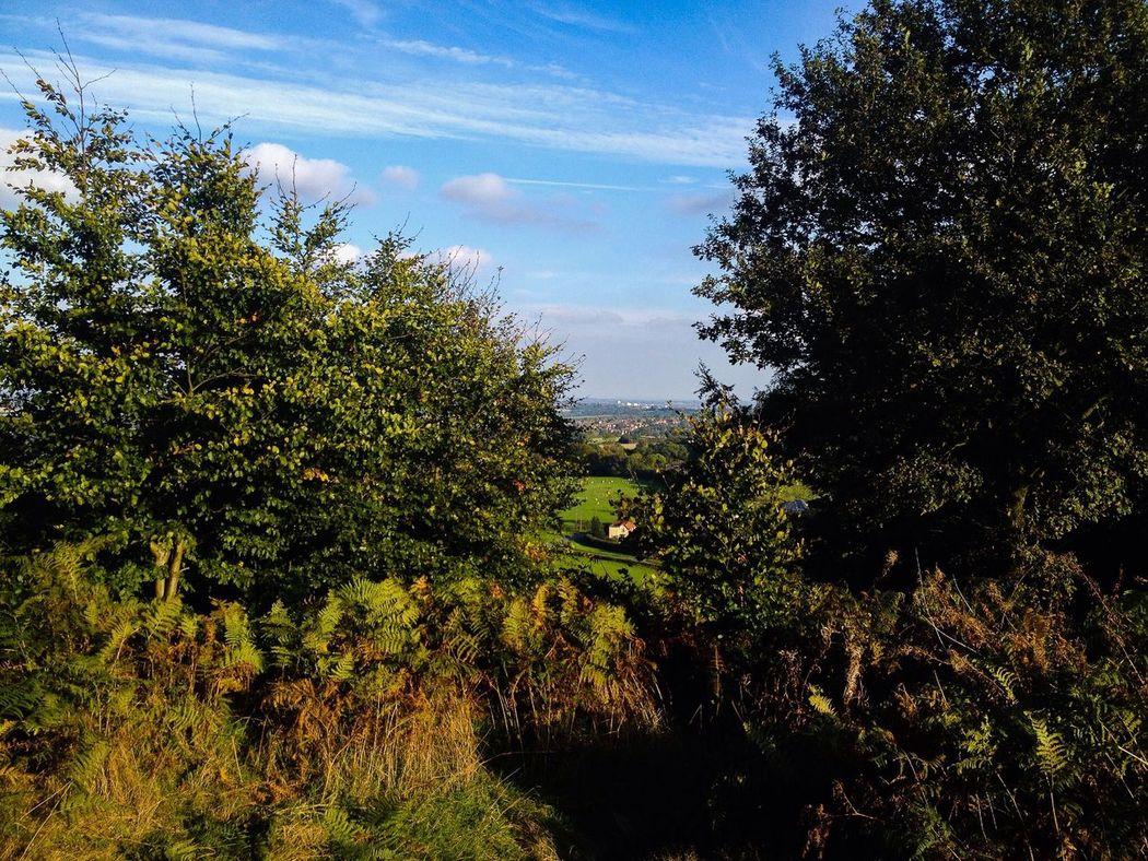 Nature On A Hike Walking Nice Views