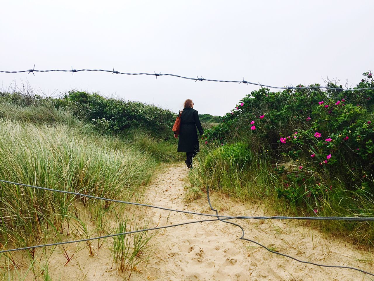 Behind border lines. Border Beach Grass Behind The Fence... Borders Fence Fences Trespassing Sand Girl Power