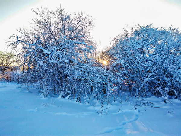 Russia Snow Nature Russianwinter Winter Sun Frozen No People Close-up Water Pixelated Outdoors Technology Day Sky Dissolving