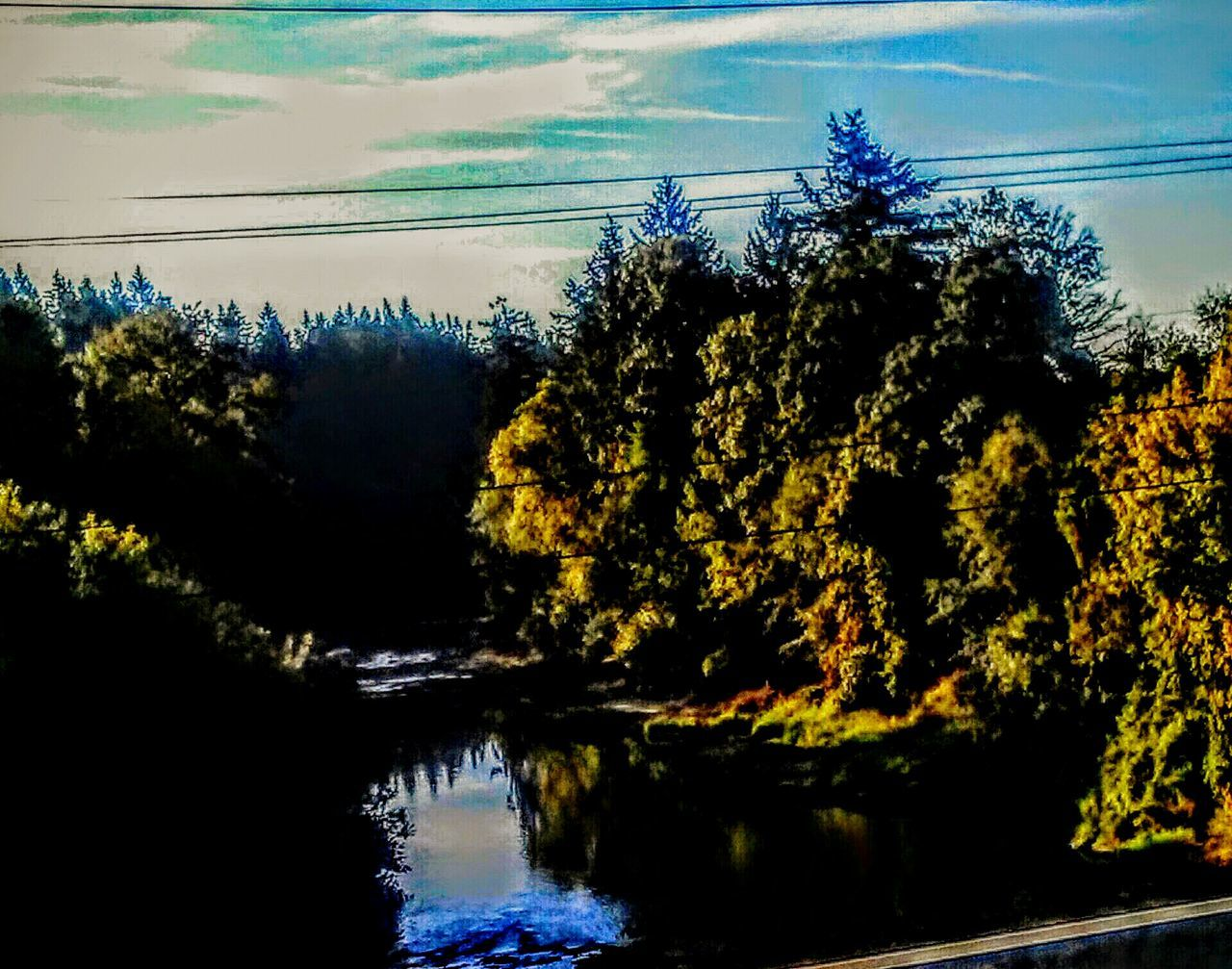 Riverside Refelections Water Reflections Water_collection Yamhill County Yamhill River Over The Bridge Stare Away  Taking Photos Enjoying Life Show Case August The Week Of Eyeem Nature_collection August Morning Colour Of Life Pivotal Ideas Color Photography Color Palette Birds Eye View Check This Out River View Life Colour Life Is A Journey Blue Sky Summer Views