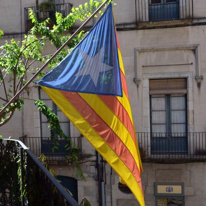 Estelada Girona Temps De Flors 2014