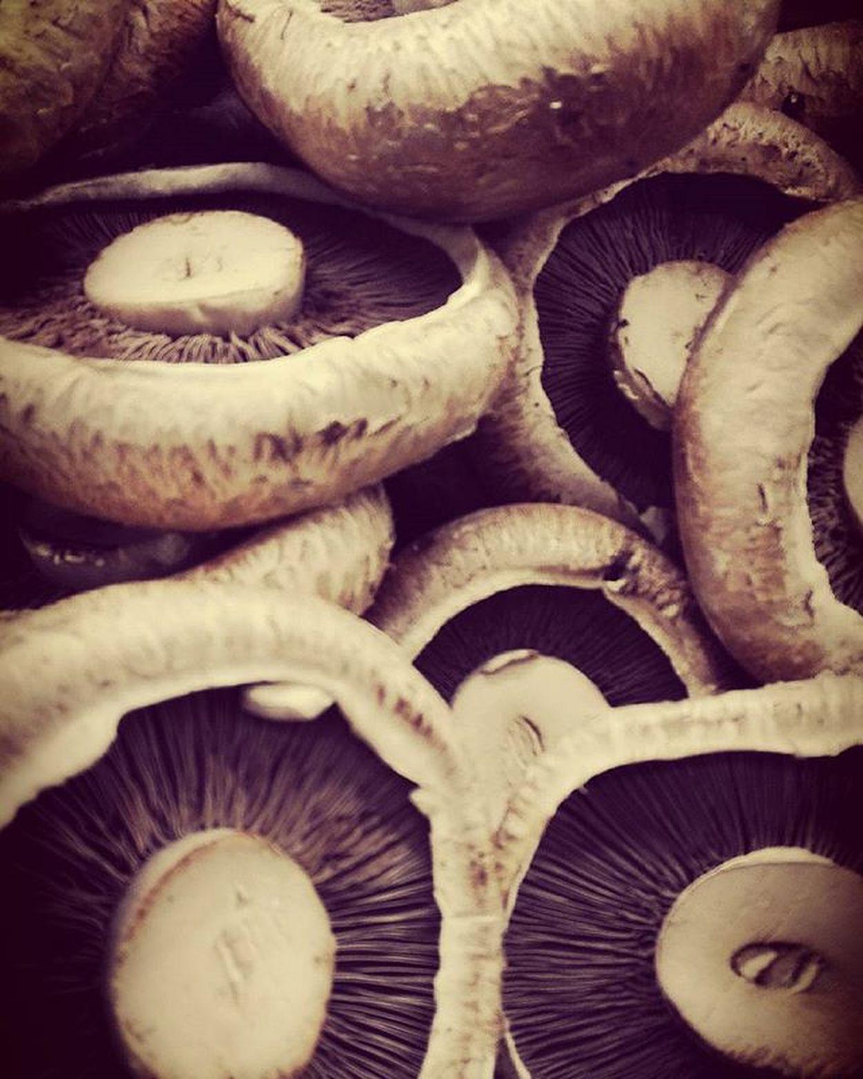 Changingplate Wmm_brown Pocket_food 9vaga_food9 Mushrooms