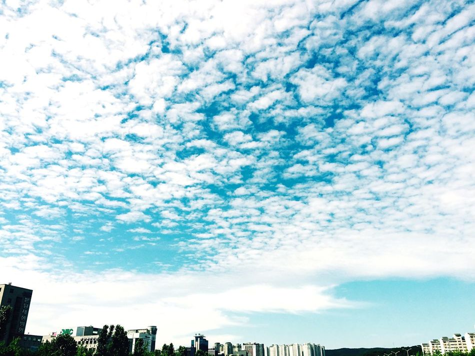 Seongnam Clouds Hanging Out