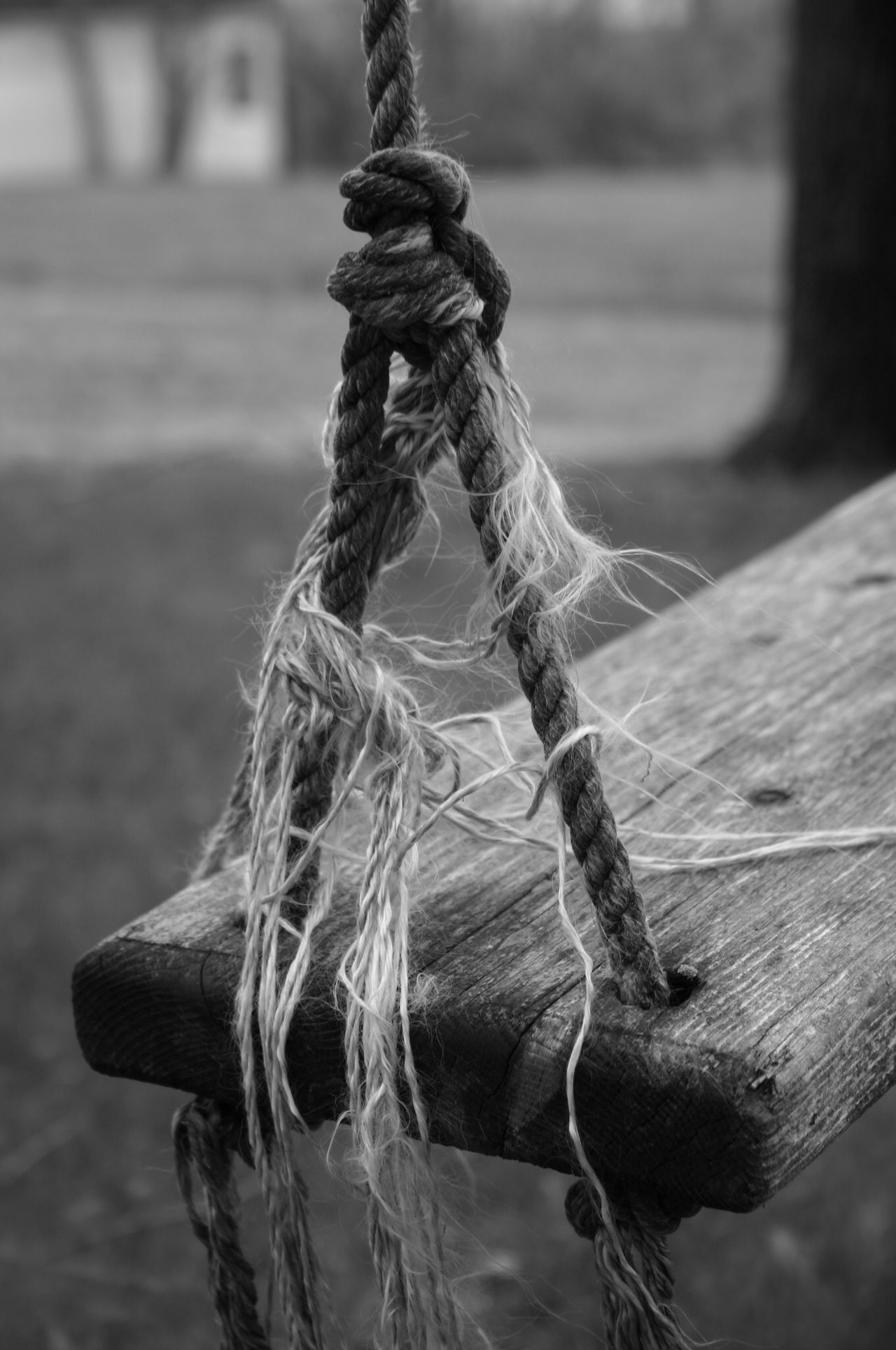 Abandoned Alone Blackandwhite Photography Close-up Focus On Foreground Old Swing Outdoors Rope Rustic Rustic Charm Wood Wood Swing Seat