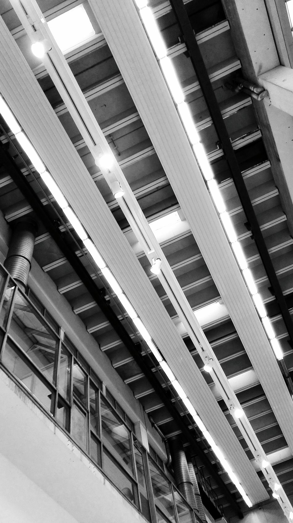 Looking Up another Factory Ceiling.
