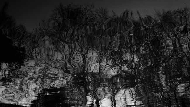 Pivotal Ideas Seeing The Sights Blackandwhite Street Photography Lake Light And Shadow Water China the reflection of the trees in the lake