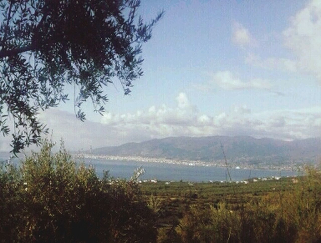 Kalamata GREECE ♥♥ <3