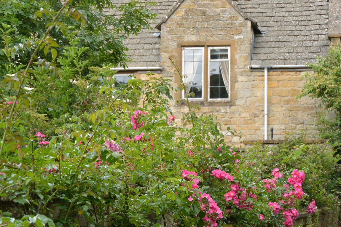 Architecture Building Exterior Built Structure Cotswolds Countryside England Eye4photography  Flower From My Point Of View Green Color House Nature No People Outdoors Pink Flower Plant Purist In Photography Purist No Edit No Filter The Purist (no Edit, No Filter) Village Window