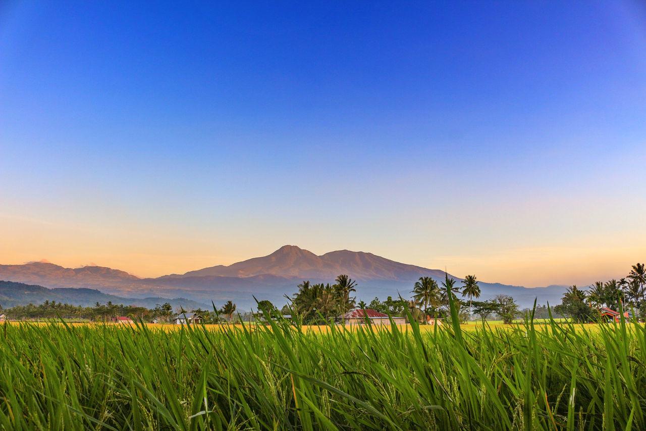 Mt. Talang before sunset... Mountain Nature Landscape Photography Wonderfulindonesia