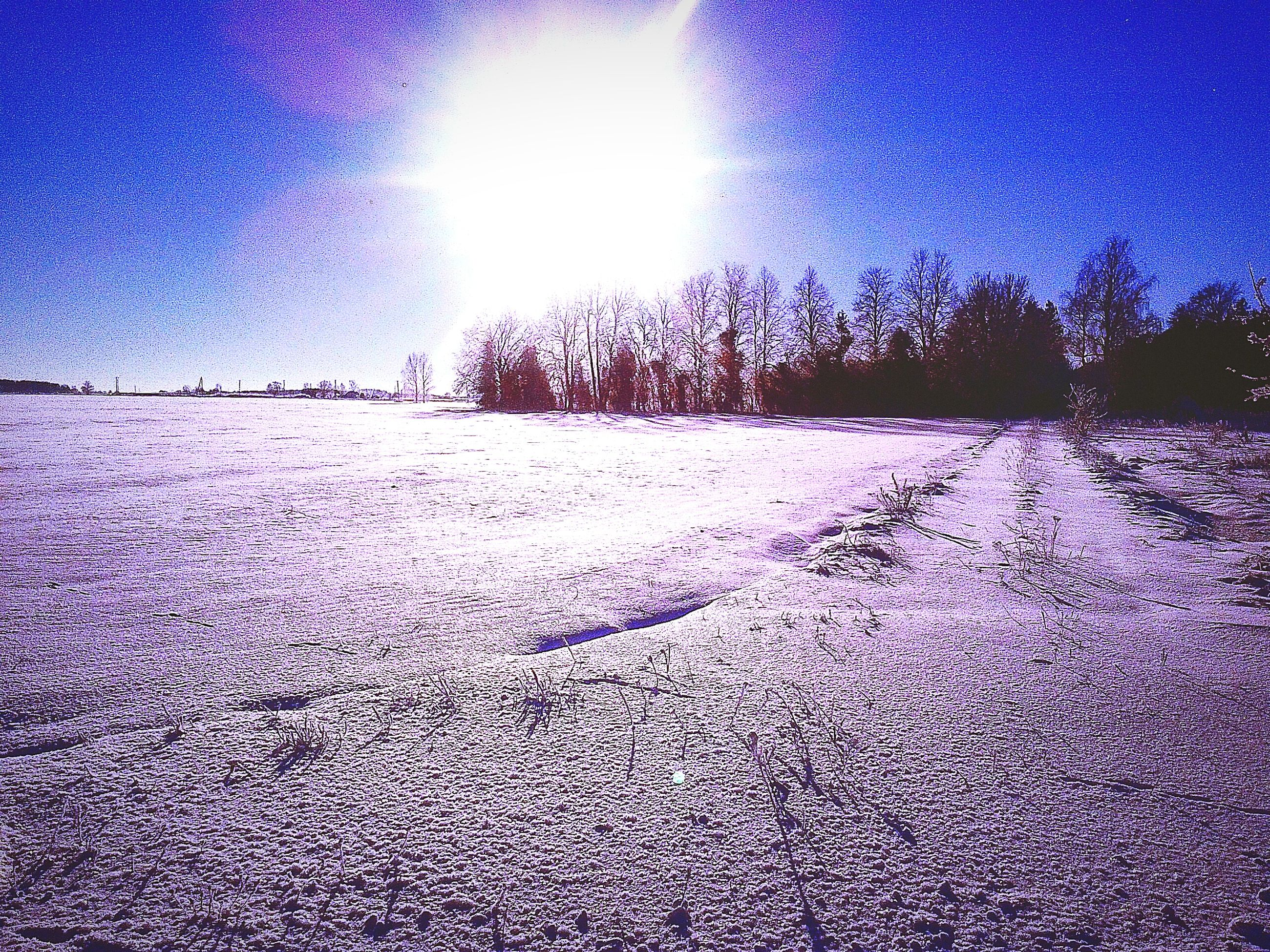 blue, snow, winter, cold temperature, sunlight, clear sky, the way forward, tranquility, nature, sun, sunbeam, tranquil scene, sky, lens flare, season, tree, surface level, landscape, sunny, outdoors