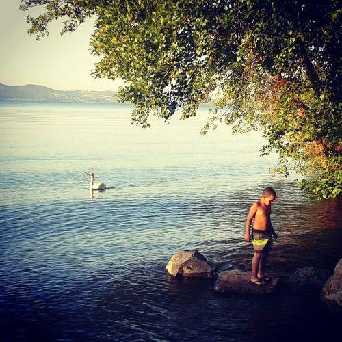 """Black&White"" Swimming Lake Nature Sunshine"