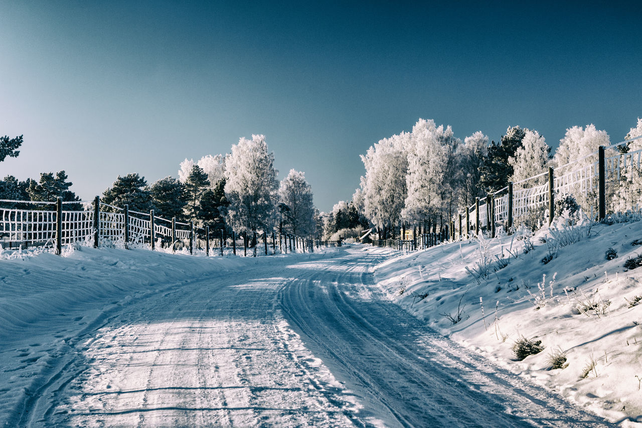 Cold Temperature Country Road Countryside Day Drastic Edit Exceptional Photographs EyeEm Best Edits First Eyeem Photo Frost Frosty Hello World Nature No People Outdoors Sky Snow The Way Forward Tree Winter Winter Winter Wonderland