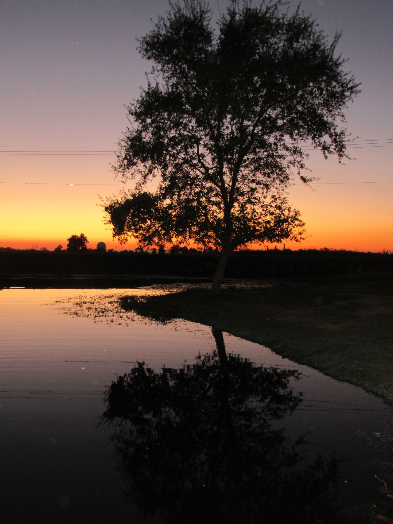 Sunset Reflection Water Tree Nature Orange Color Lake Wet Tranquility Sky Outdoors No People IMYE Loudthougts Take A Walk With Me