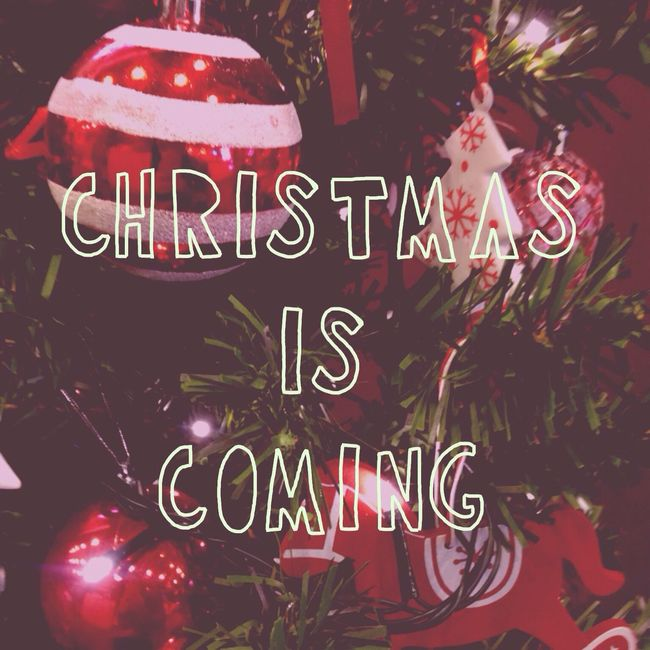 Christmas is coming! Merry Christmas! 블링블링