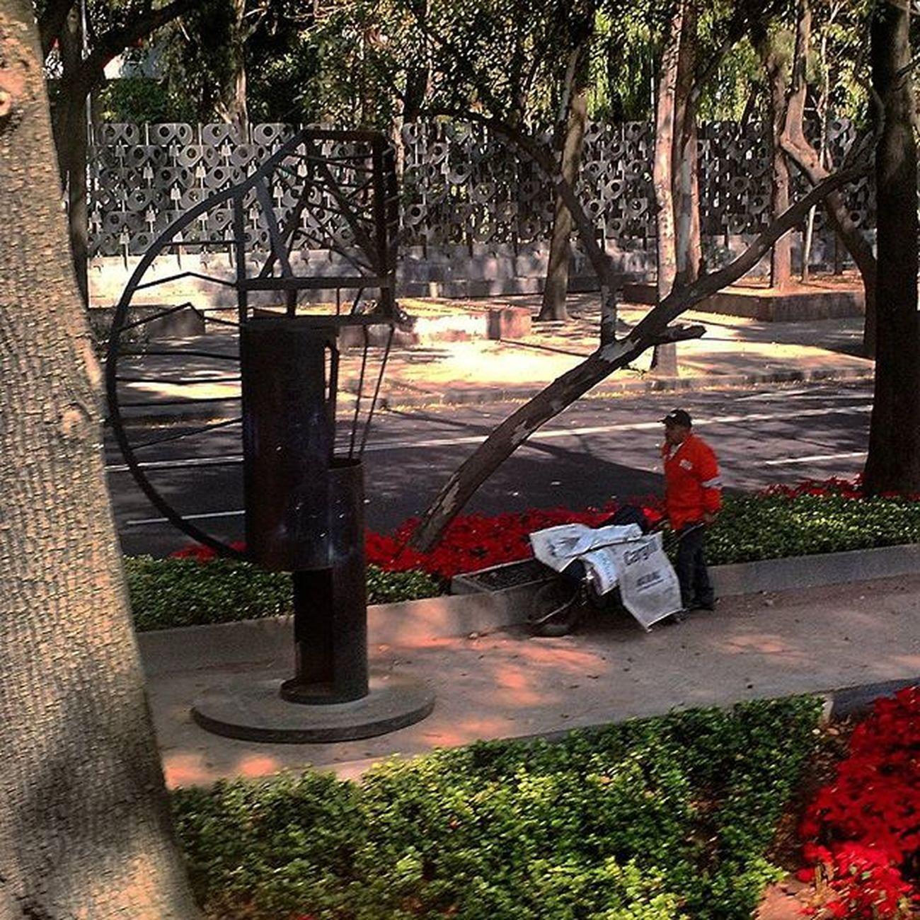Man at work with art work Streetlife Mexicocity  Cdmx Tamayo Modernart Sculpture Urbanlife