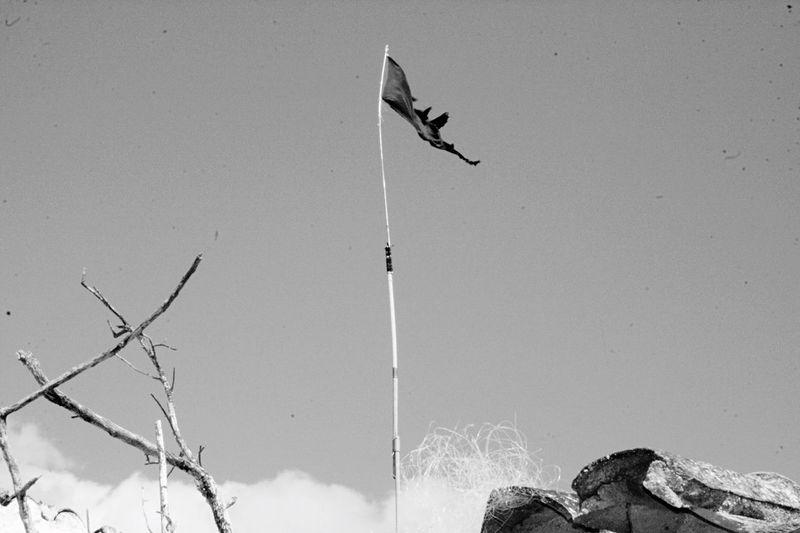 Momochrome Blackandwhite Flag Pirate Black Flag Portugal Praia De Quarteira..Plage De Quarteira Algarve Quarteira