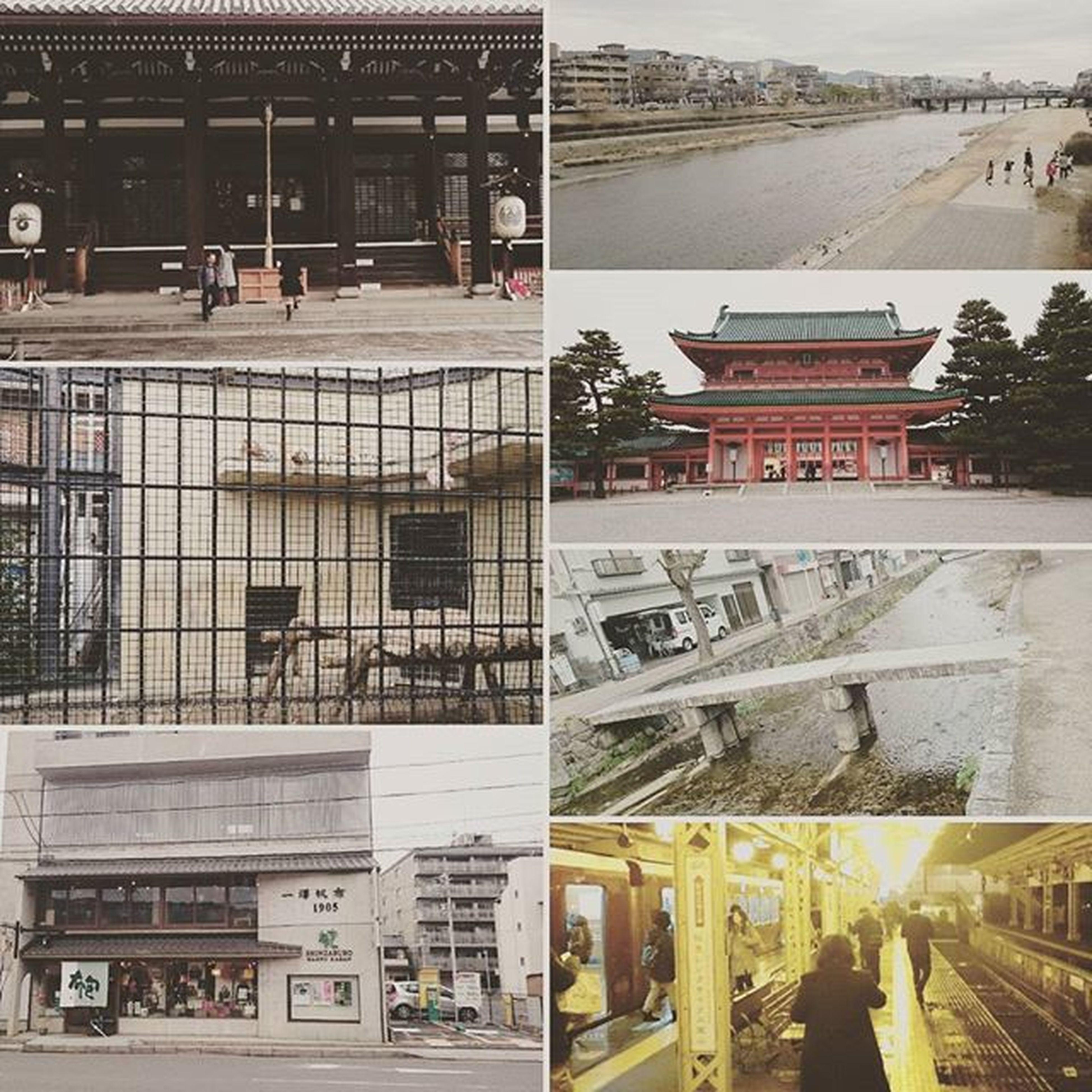 本日行ったところ。全て歩きで行きやした。 本能寺 鴨川 平安神宮 白川 京都市動物園 嵐山温泉