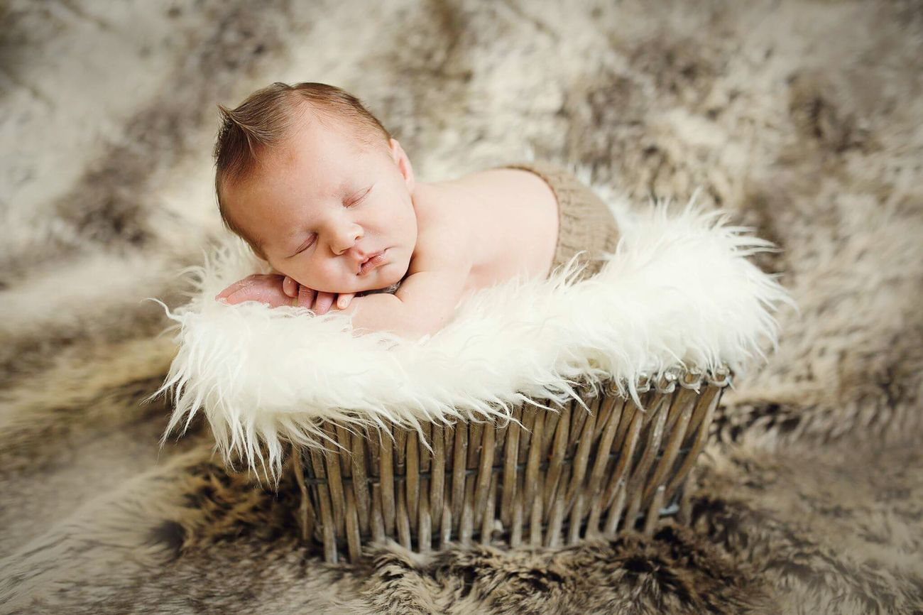 NewBorn Photography New Life Newborn Baby Newborn Photo Newborn Puppy  Newbornlifestyle Baby ❤ Baby Photography Newbornbaby