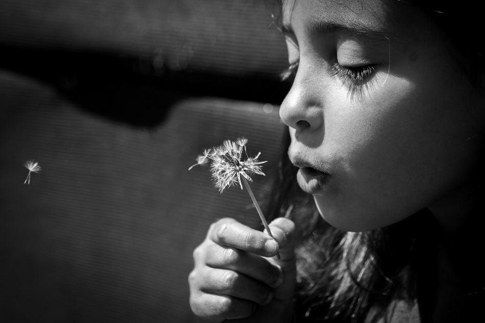 ... Flower One Person Fragility Close-up Childhood Flower Head Outdoors Day Spring Love Dandelion EyeEmBestPics EyeEm Canon Eye4photography  Getting Inspired EyeEm Gallery Beauty In Nature Portrait Blackandwhite Bw_collection Black And White Black & White Make A Wish EyeEm Best Shots