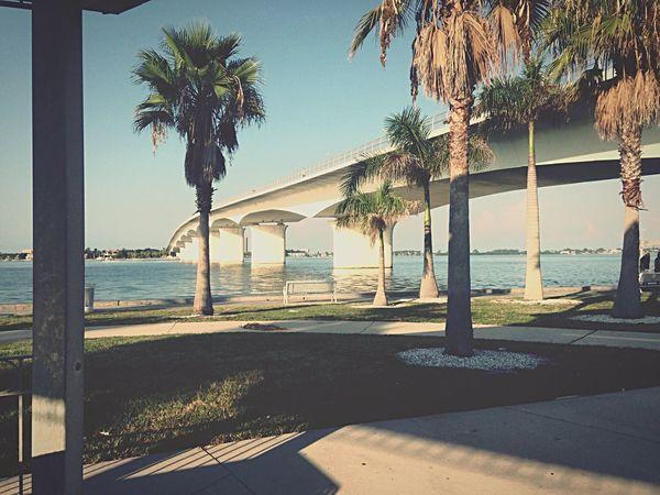 St Armands Bridge, Sarasota Taking Photos Mymomsshot Enjouinglife
