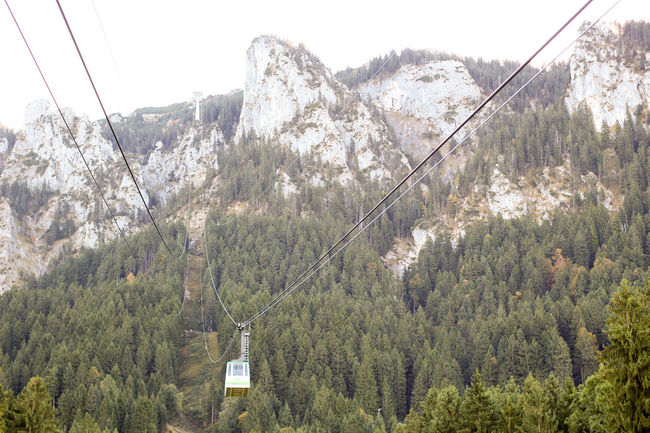 Beauty In Nature Cable Car Climb Hanging Low Angle View Nature Outdoors Rocks Scenics Sky Tree